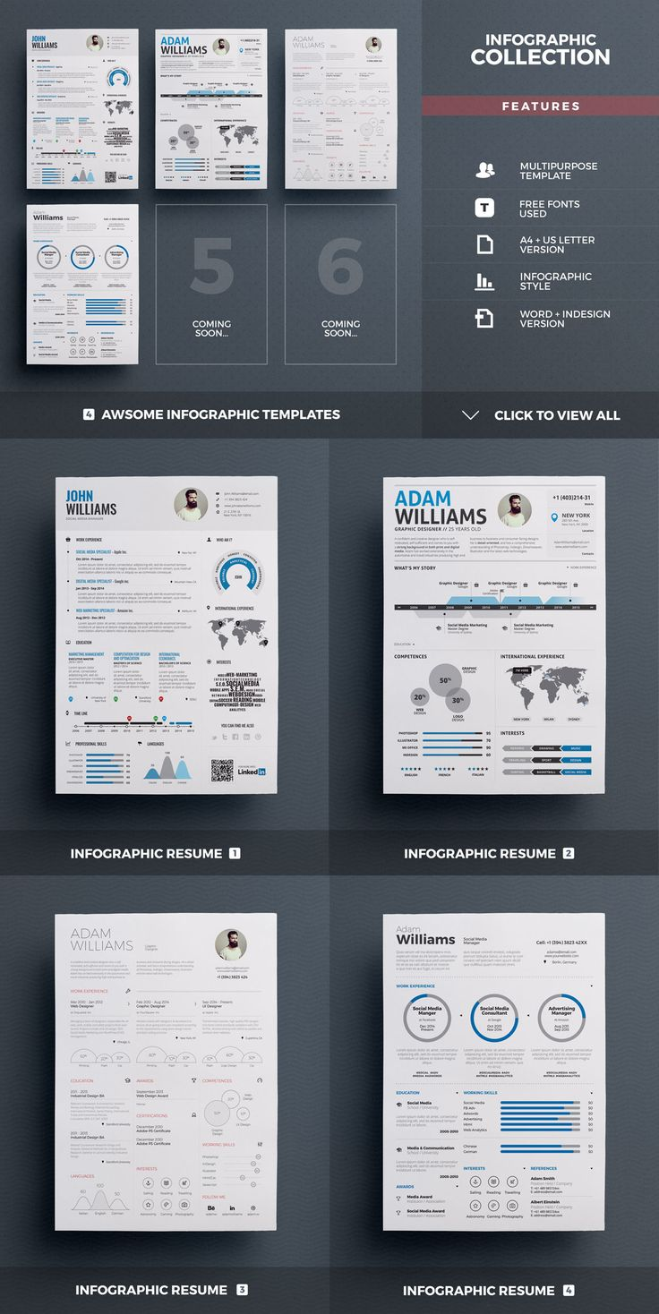 Best Selling Resumes   All In One By TheResumeCreator On @creativemarket  Infographic Resume Creator