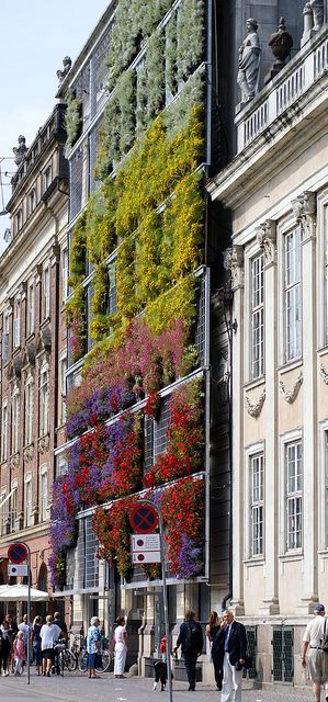 Wall of Flowers in Copenhagen, Denmark #nydesignagenda #toparchitects