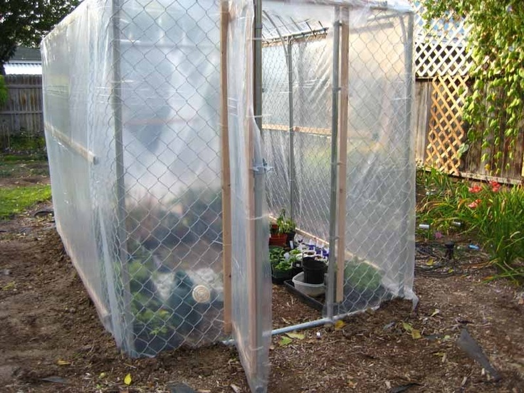 23 best ideas about greenhouse ideas on pinterest coops for Dog kennel greenhouse