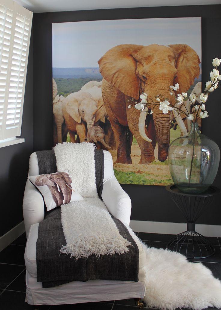 Kudde olifanten in de slaapkamer