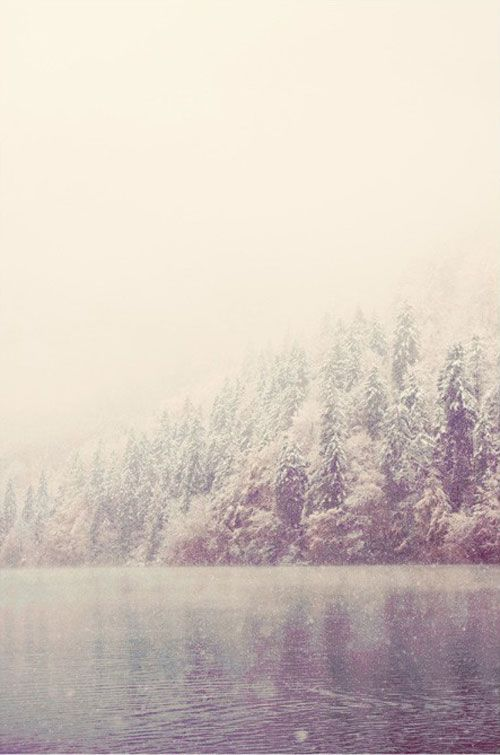 winter by laura evans