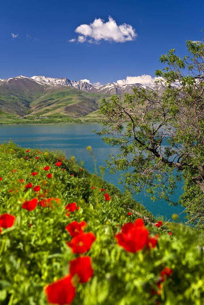 Van - Akdamar , Turkey