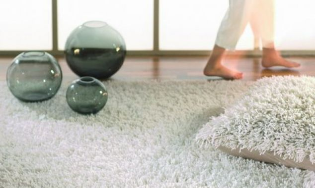 17 Best Ideas About Smelly Carpet On Pinterest Diy