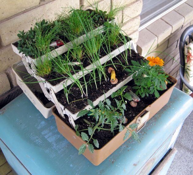 Herb garden for a fisherwoman: Gardens Ideas, Container Gardens, Boxes Gardens, Herbs Planters, Minis Gardens, Herbs Gardens, Fish Tackle, Tackle Boxes, Gardens Stuff