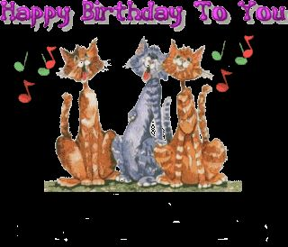 Cat Cats Singing Happy Birthday To You Animations Animation Animated