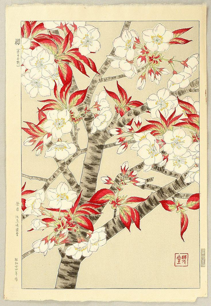 Cherry Blossoms II - by Shodo Kawarazaki 1889-1973