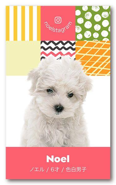 ペット名刺 犬デザイン 縦型012<br> オーダーメイド 犬グッズ (1個50枚入)