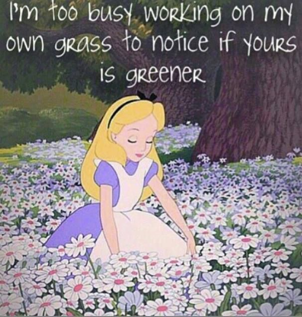 Funny Quotes About Being Too Busy: I'm Too Busy Working On My Own Grass To Notice If Yours Is