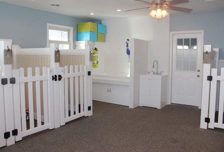 Cherished Pet Care - Luxury Dog Boarding. I want to build one of these rooms for my dog and future dogs