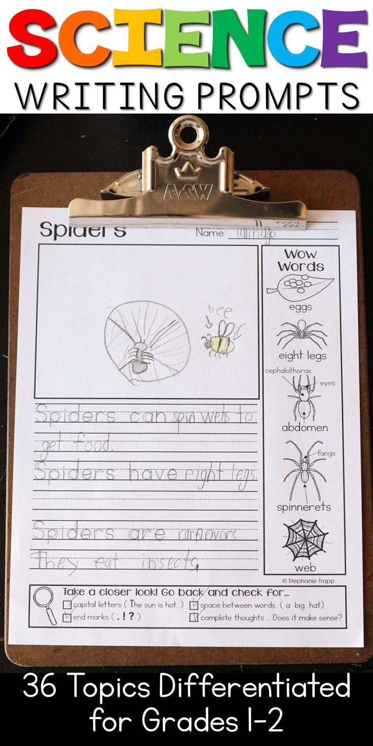 Science essay ideas