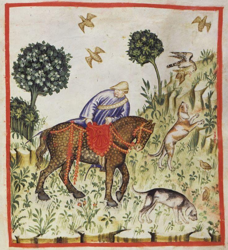 Theatrum Sanitatis: Ms.4182 tav.129 Scena di caccia / Hunting scene
