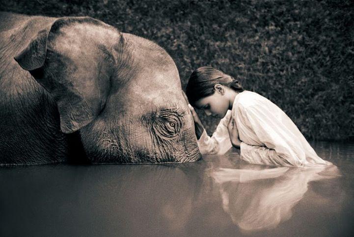 Photographer Gregory Colbert captures the beautiful, uninhibited relationship between man and wildlife.