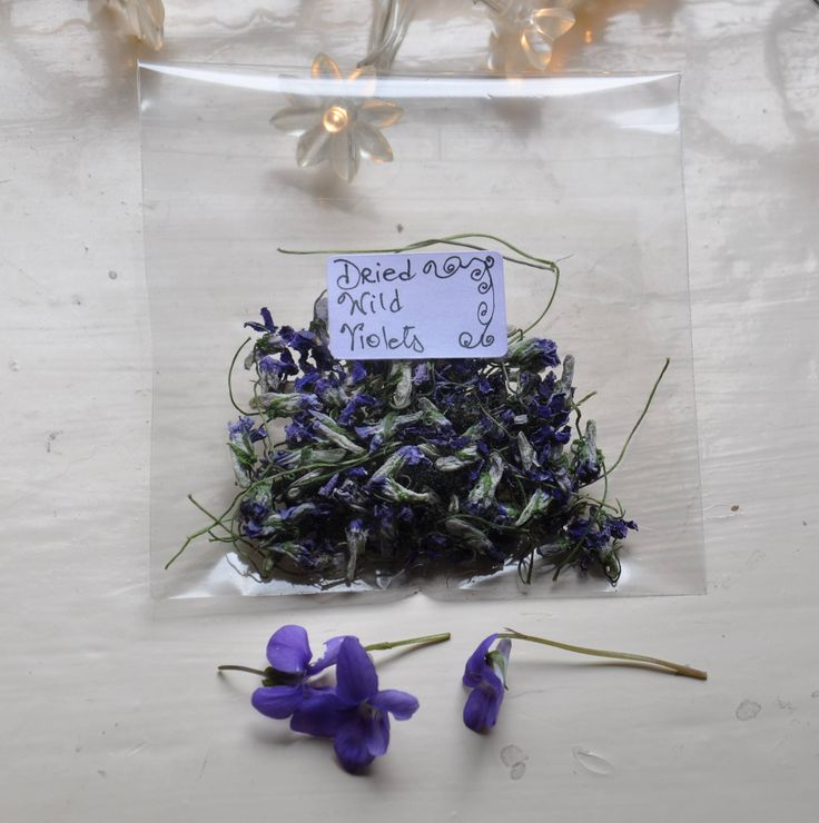 Dried Wild Violets, Dried Flowers, Flora, Fauna, Potpourri, Spell, Wildflower, Wildcrafting, Fairy by GothiqueAlice on Etsy