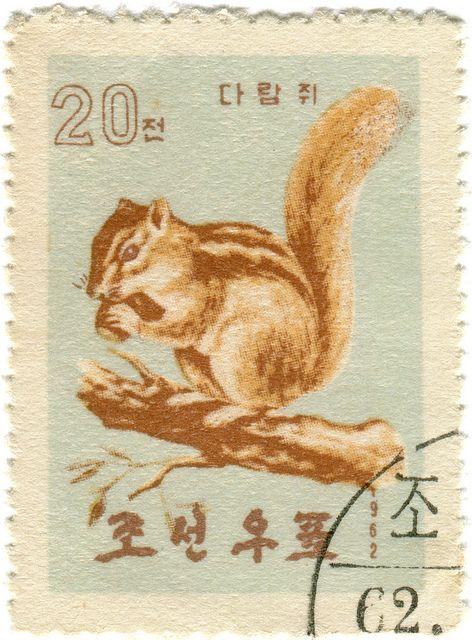 north korea postage stamp, chipmunk by karen horton, illustratin, lovely pale colours, collage, vintage