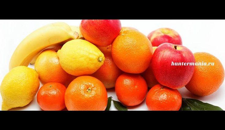 Хранение фруктов (полезные советы) http://www.huntermania.ru/2015/12/xranenie-fruktov-poleznye-sovety/