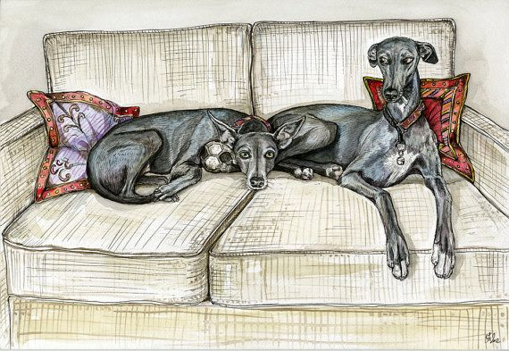 Without a Doubt Greyhound dog print 5 x 7 by AlmostAnAngel66