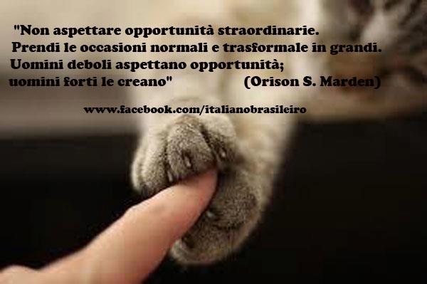 """""""Non aspettare opportunità straordinarie.  Prendi le occasioni normali e trasformale in grandi.  Uomini deboli aspettano opportunità; uomini forti le creano""""  (Orison S. Marden)"""
