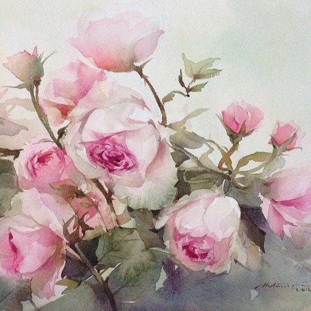 English Roses Watercolor Art Of Pink Watercolor Paintings