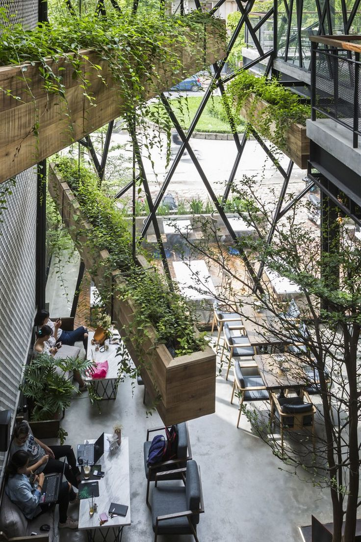 Steel Framed Caf 233 Becomes Hanging Garden In Vietnam