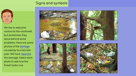 Rainforest: use signs and symbols image - ABC Splash