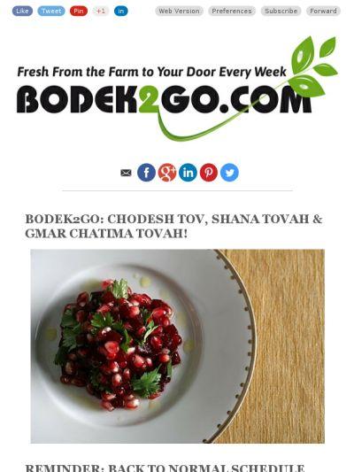 BODEK2GO: CHODESH TOV, SHANA TOVAH & GMAR CHATIMA TOVAH!