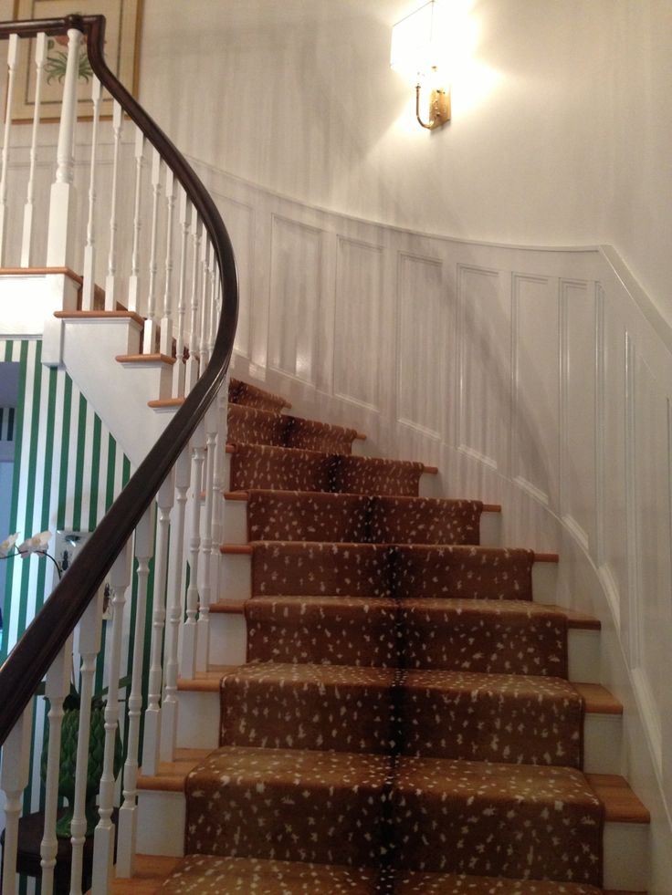 Best 25 Carpet Stair Runners Ideas On Pinterest: 25 Best Antelope Runner Images On Pinterest