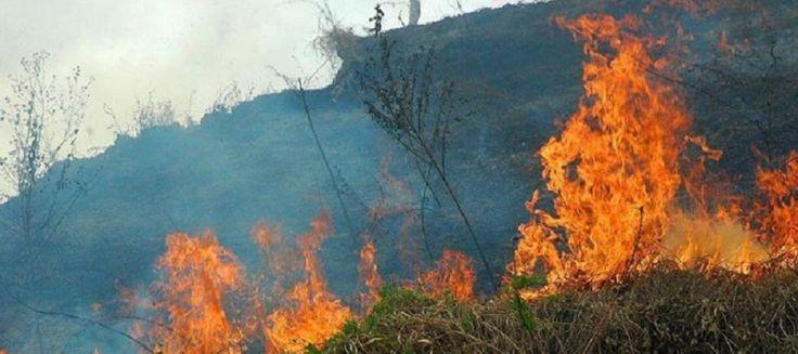 SALOBREÑA. La campaña busca concienciar sobre las causas de los incendios, su extinción y los medios con los que se cuenta para ello.