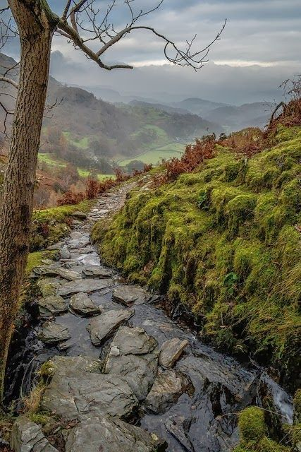 Stone Creek, Coniston, England