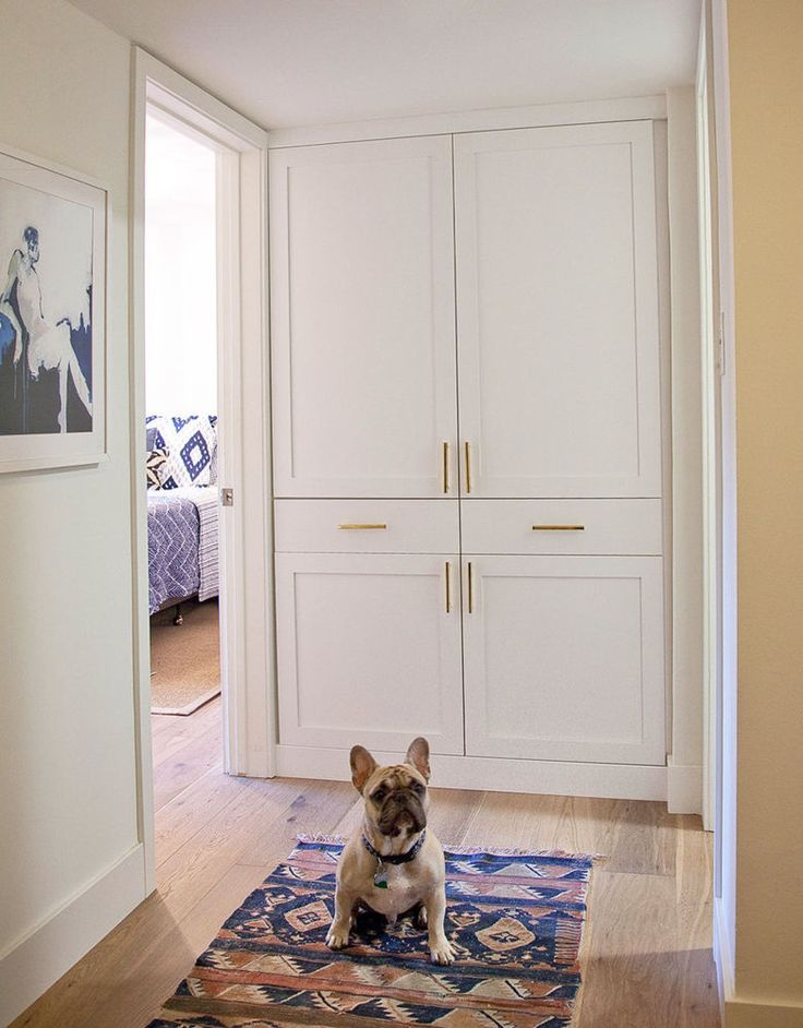 That little face and pointy ears. Gorgeous Hallway, love the placement of the handles and the style.