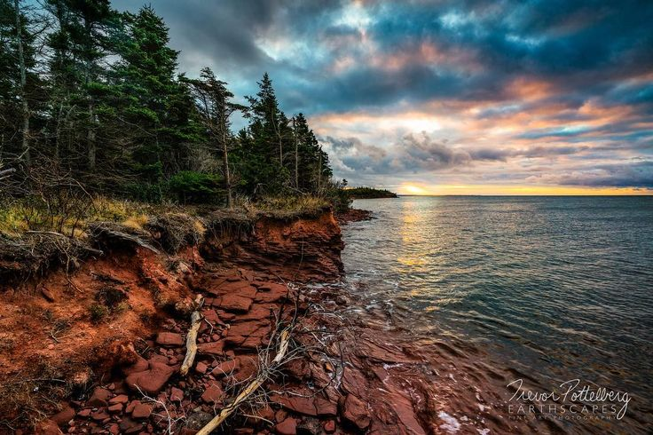 Happy Wednesday Folks!  I have a new release to share tonight.  This piece is titled Point Prim Sunrise - Order 631 - photographed in Point Prim PEI Canada - featuring a pastel sunrise revealing the red sandstone cliffs that PEI is famous for.  The windswept pines give you a real sense of the power and adaptation of Mother Nature. #pei #peisunrise #pointprim #redsandstone