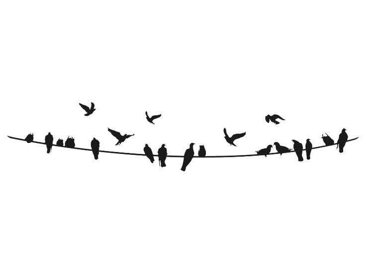 Vögel Wandtattoo Vögel auf Stromleitung Vögel bei Wandtattoos.de