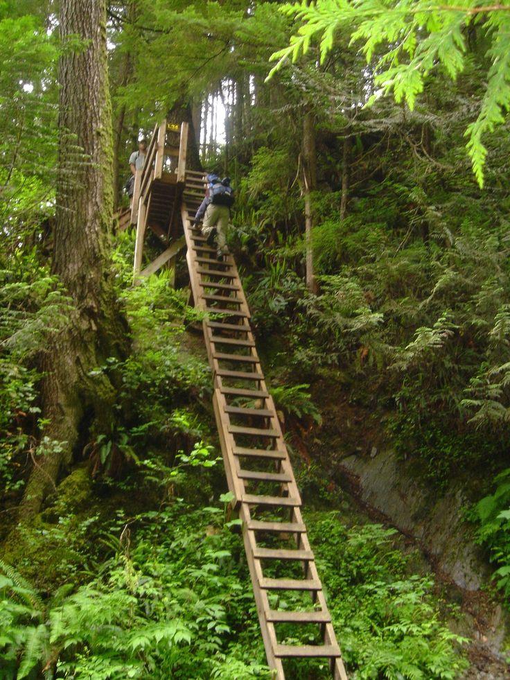 The West Coast Trail - Vancouver Island, British Columbia, Canada