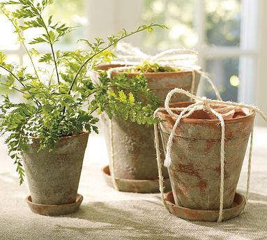 "Imparting Grace: how to use Valspar ""stone"" spray paint to create terra cotta pots with an instant patina--so easy!"