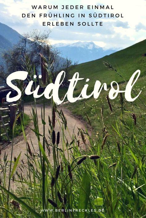 Südtirol: Wenn ich tatsächlich sagen sollte, welche Aktivitäten ich für einen Frühlingstag in Südtirol am ehesten empfehlen würde, es wären Stehenbleiben, Sehen und Staunen. Den ganzen Artikel gibt's dazu auf www.berlinfreckles.de