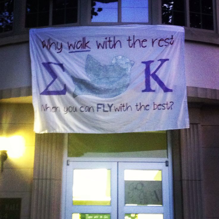 Why walk with the rest when you can FLY with the best? ΣΚ  Gamma Pi chapter at Kentucky Wesleyan College: for the weeks before and during recruitment. The dove is covered in glitter and glow in the dark paint so the dove stands out at night and day.