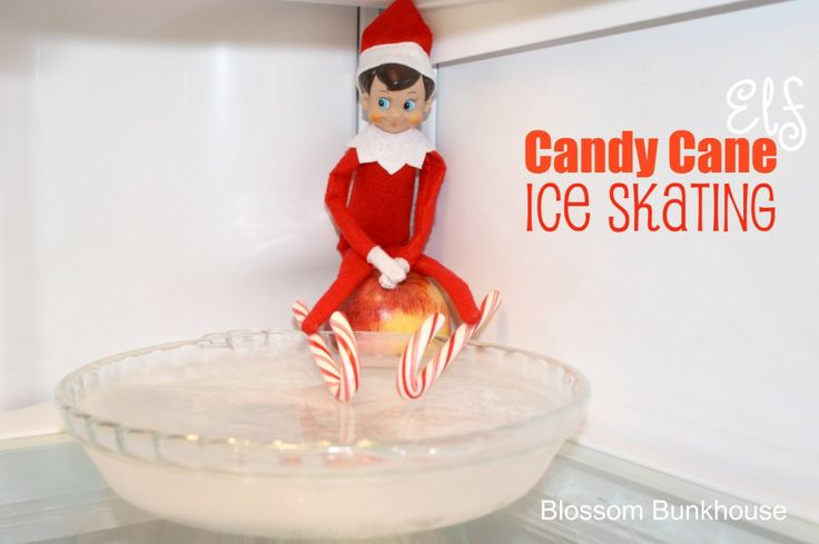 Elf On The Shelf Series   Candy Cane Ice Skating