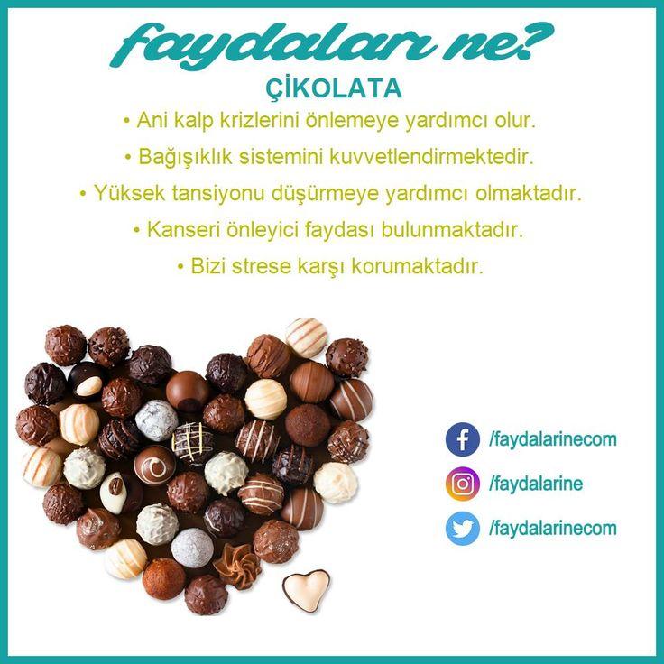 #çikolata #çikolatanın faydaları #çikolatanın faydaları nelerdir #faydaları #zararları #faydalarıne #faydalarine
