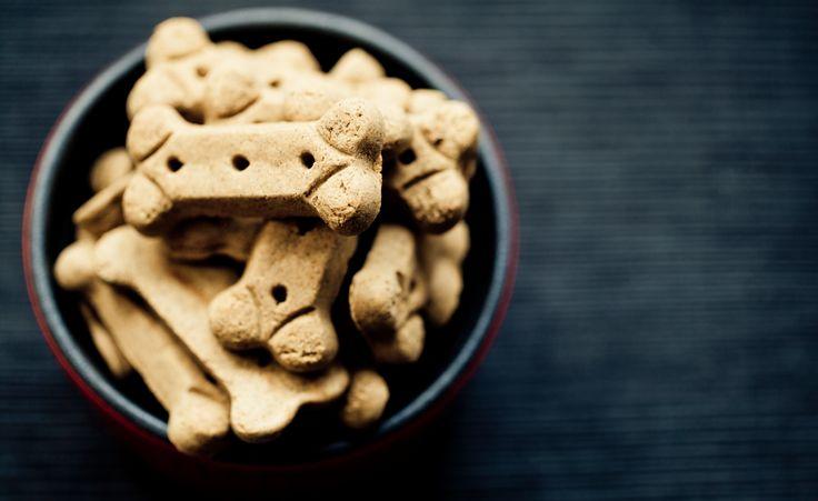 Als Geschenk für Hundefreunde oder den eigenen Vierbeiner: Diese drei Rezepte für leckere Hundekekse kommen direkt aus der Backstube und machen Bello glücklich.