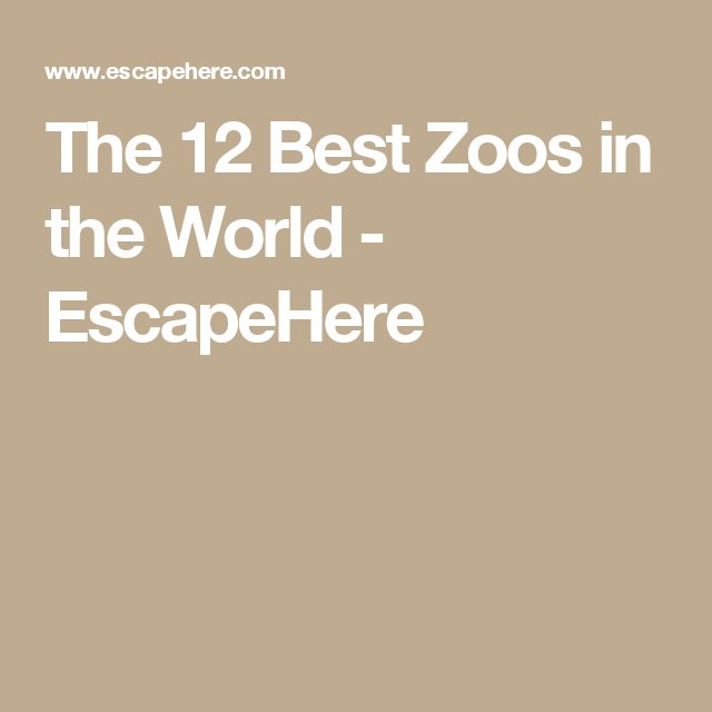 The Best Zoos In The World EscapeHere Travel Pinterest - The 12 best zoos in the world