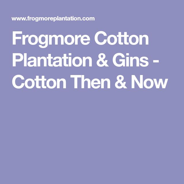 Frogmore Cotton Plantation & Gins - Cotton Then & Now