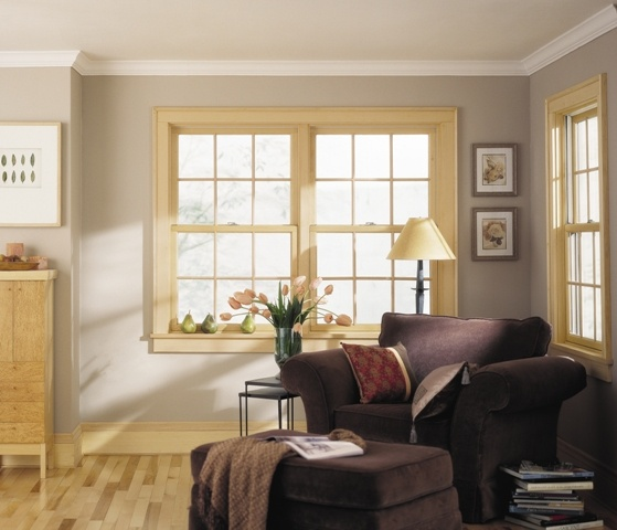 17 best images about double hung windows on pinterest for Buy double hung windows online