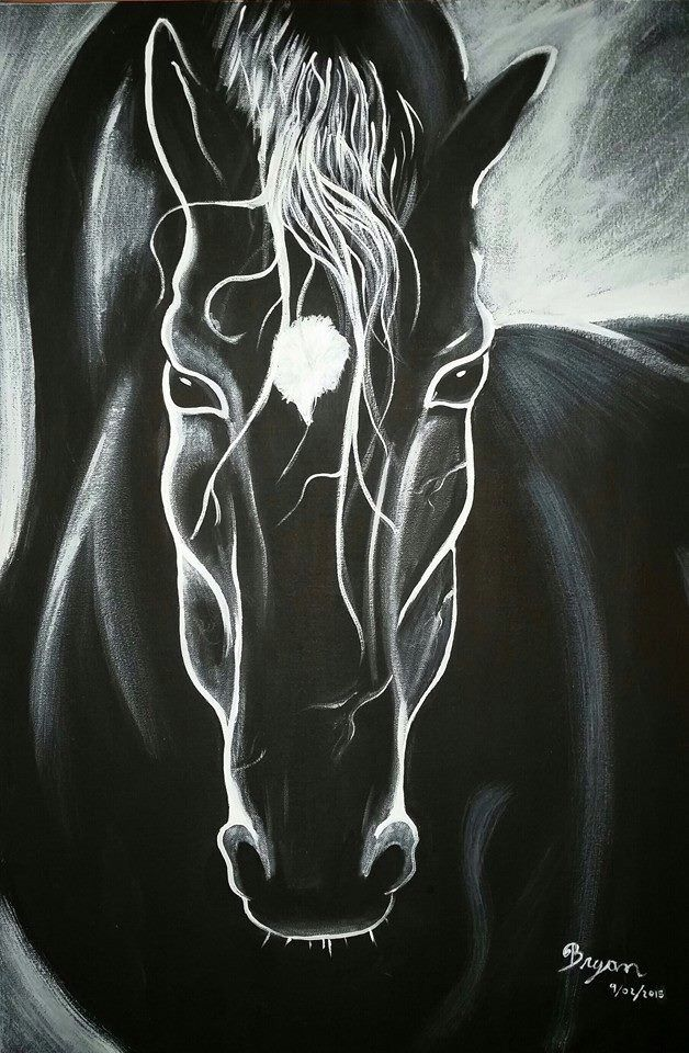 Black horse - caballo negro