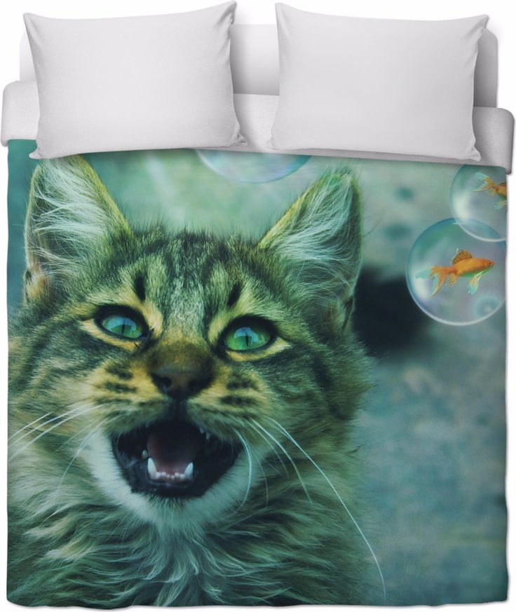 Check out my new product https://www.rageon.com/products/cat-and-fish-duvet-cover?aff=BWeX on RageOn!