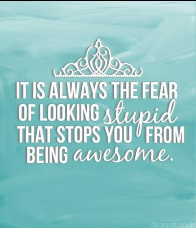 """""""It's always the fear of looking stupid that stops you from being awesome."""" Kiera Cass, The Selection (The Selection, #1)"""
