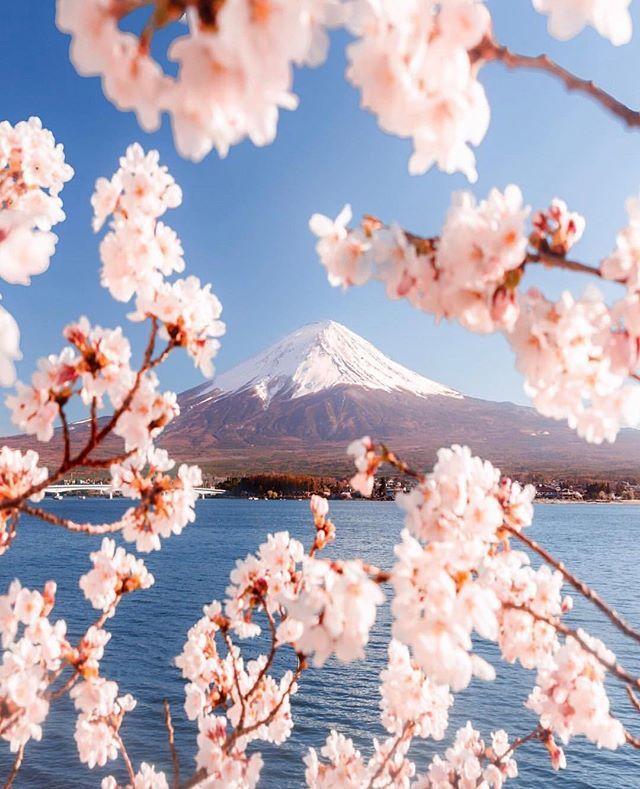 Japan Vacations Japan Vacations Instagram Photos And Videos Japan Vacation Mount Fuji Japan Mount Fuji