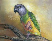 MOHRENKOPFPAPAGEI Kunst Grafik vom Künstler Nicole Troup, Mohrenkopfpapagei Malerei, Tropenvogel Malerei, Papagei Giclée-Druck unterschreiben, Parrot Malerei