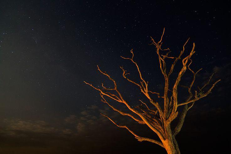 las mejores fotos nocturnas - Buscar con Google