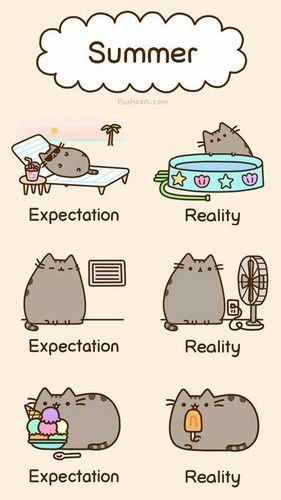 summer fun - Pusheen the Cat Photo (37024757) - Fanpop