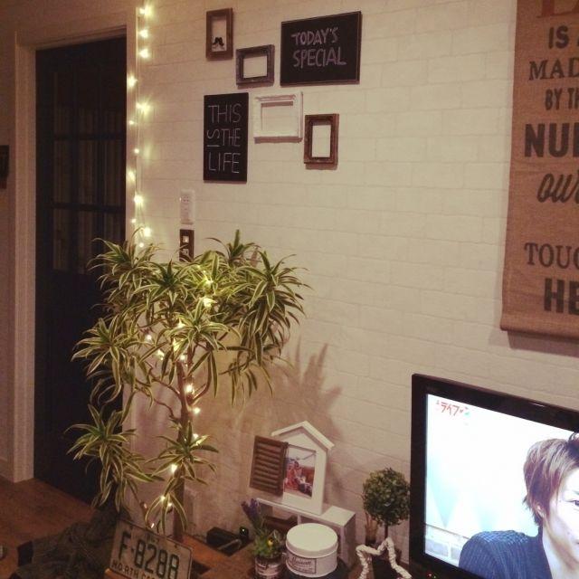 植物 #イルミネーションライト#観葉植物のインテリア実例 | RoomClip (ルームクリップ)