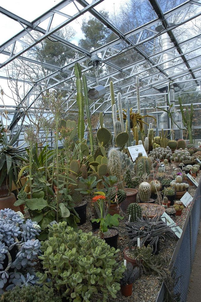 Building A Greenhouse Plans | Gardening | Diy greenhouse, Build a
